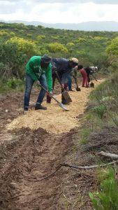 conservancy team at work on Klipspringer mtb