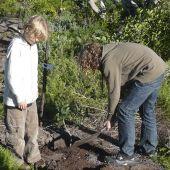 Fynbos Conservancy Forest Restoration