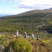 Wlaker Bay Hiking Trails